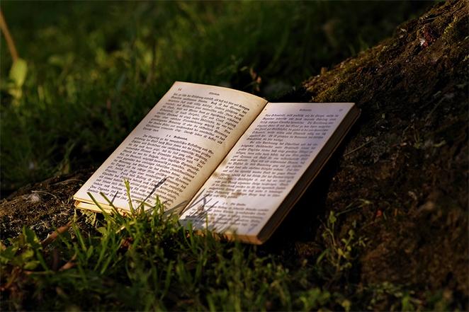Misli o knjizi i knjizevnosti - Page 7 Citati3