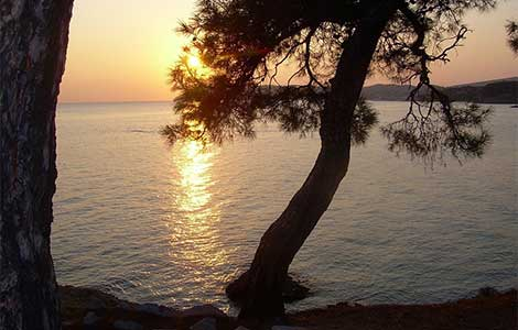 tasos rajsko ostrvo drugi deo laguna knjige