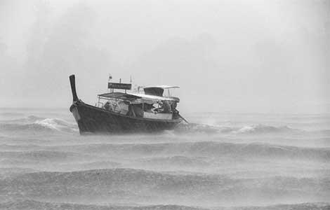 kiša, ludilo, i srednji vijek na mediteranu laguna knjige