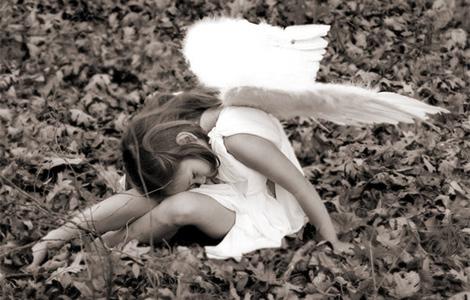 kad umiru anđeli laguna knjige